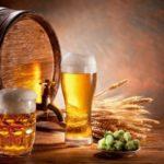 Пиво в домашних условиях / Простые рецепты