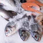 Рыбья чешуя может стать возобновляемым источником энергии